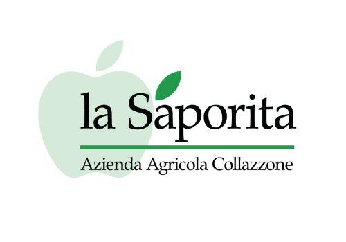 Logo La Saporita